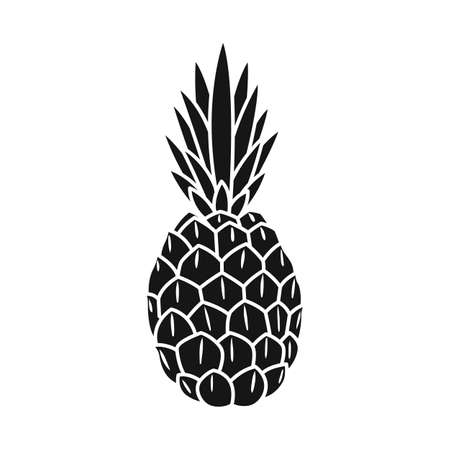 Isolated object of ananas and vitamin. Web element of ananas and tropical vector icon for stock.