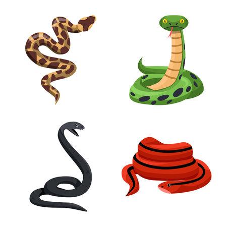 Vector design of snake and creepy symbol. Set of snake and danger stock symbol for web. Illustration