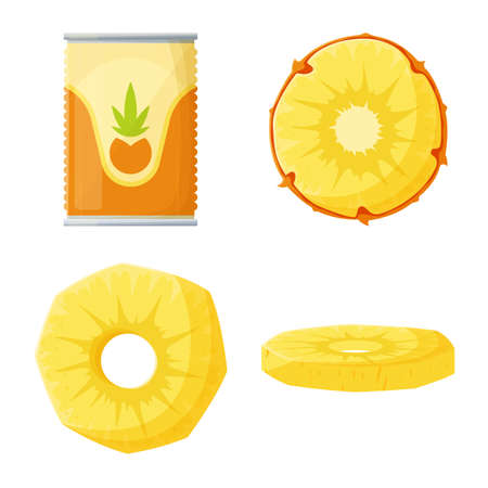 Vector illustration of pineapple and fruit. Collection of pineapple and food stock symbol for web.