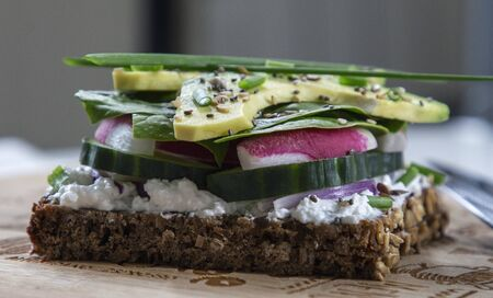 Fresh vegetarian sandwich with greens and avocado