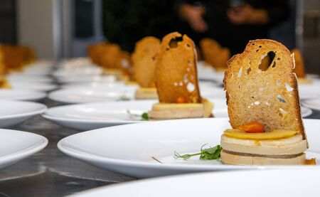 stylish fresh trendy new french foie gras on a plate