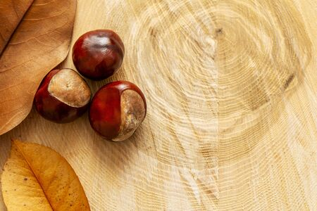 fresh french chestnuts on wooden tray