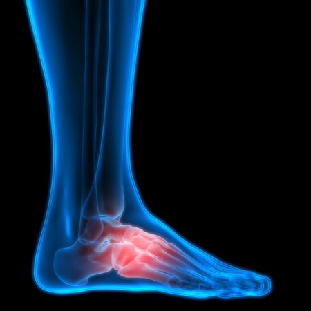 pains: Human Body Bone Joint Pains (Foot joints and Bones)