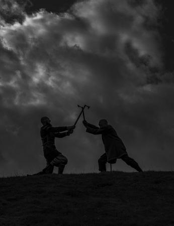 Vikings: Fighting vikings