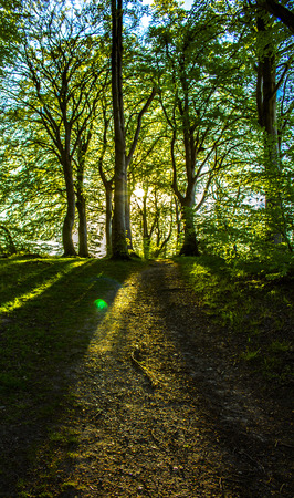 The beautiful Danish landscape Stock Photo
