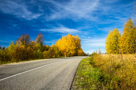 Road and Fall Stock Photo