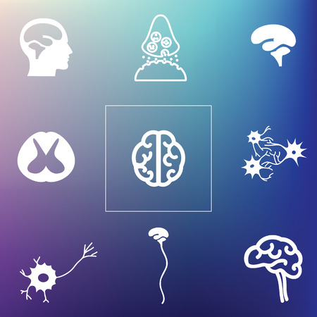 vector illustration / brain and neural system icons on blurred background