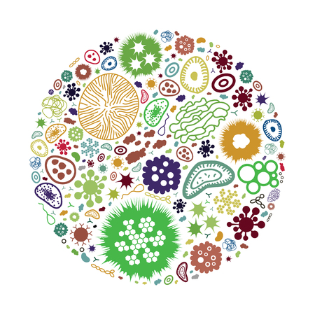 vector illustration of bacteria and pathogens in circle shape design for health protection concepts