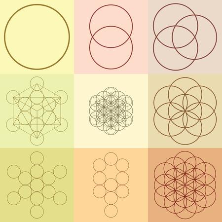 Vector illustration  flower of life  sacred geometry  ancient symbol