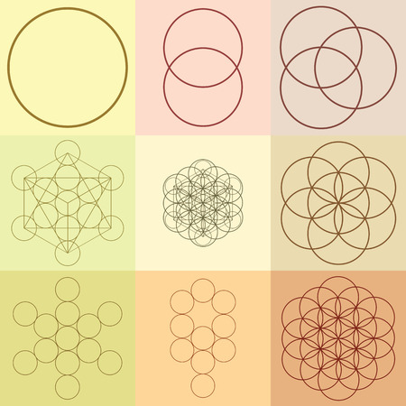 Vector illustration  flower of life  sacred geometry  ancient symbol