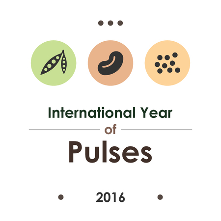 vector illustration  international year of pulses