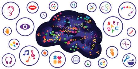 vector illustration of different sensory toys and motor skills tools for brain and thinking development