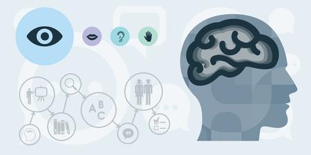 illustration vectorielle de la tête et du cerveau avec les modalités des sens visuels auditifs et sensoriels pour le concept de différentes stratégies éducatives Vecteurs