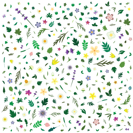 vector illustration for floral and herbal pattern with flowers and green leaves for backgrounds and wallpaper