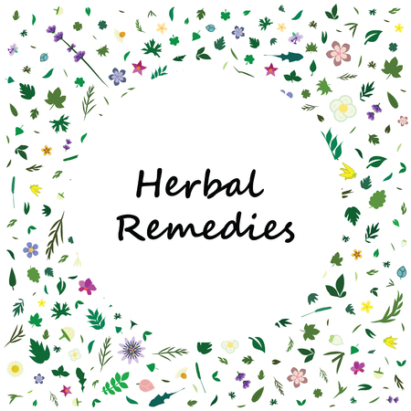 vector illustration for floral and herbal products with flowers and leaves decoration and frame for text