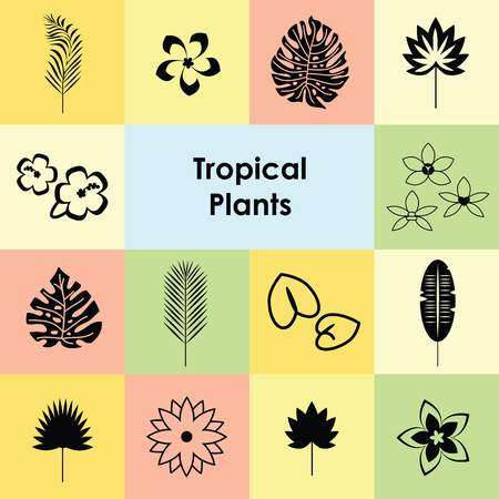 vector illustration / tropical plants icons set / palm leaves and exotic flowers