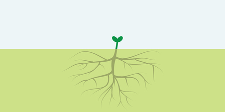 vector illustration of small plant with big root for visible results concept with free space for text Illustration