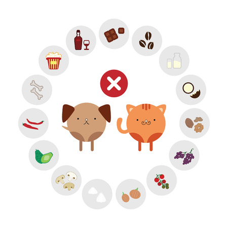 vector illustration of harmful foods for pets foods in circle design