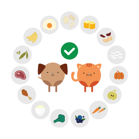 vector illustration of healthy foods for pets foods in circle design