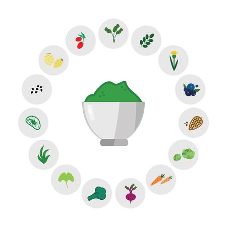 illustration horizontale vectorielle du mélange de superaliments en poudre verte avec des symboles d'ingrédients pour le concept de fournitures de nutrition saine