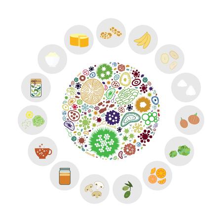 Ilustración vectorial de símbolos de ingredientes de alimentos probióticos y prebióticos para el concepto de suministros de nutrición saludable