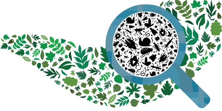 vector illustration of different bugs and insects and leaves in wave shape with magnifier for plant protection in agriculture Archivio Fotografico - 126179419