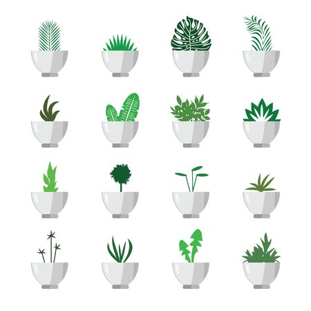 vector illustration of different flower pots grid for green interior decoration in minimalistic style Ilustração