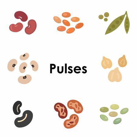 vector illustration of  different types of pulses colorful icons