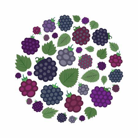vector illustration of blackberries in circle shape design 向量圖像