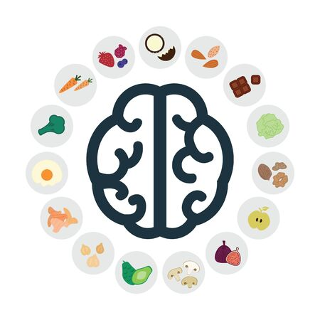 vector illustration of healthy foods for increasing brain activity