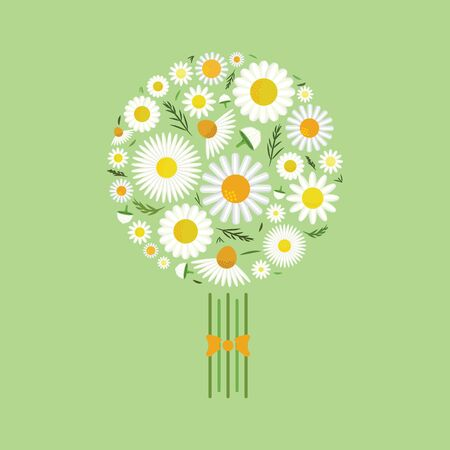 vector illustration of chamomile flowers in bouquet for greeting cards and floral designs