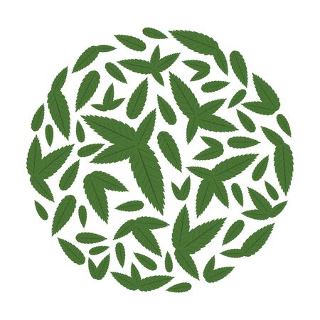 vector illustration of mint green leaves flavor in round shape design Illustration