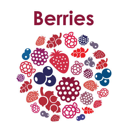 Vector illustration / berries / circle design Banque d'images - 152032613