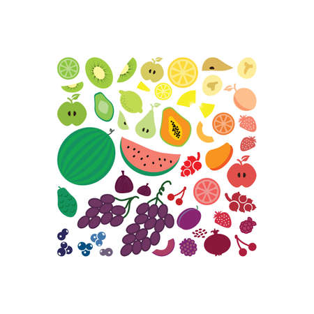 Vector illustration / fruits flat lay/ square design