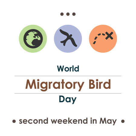 vector illustration / migratory bird day