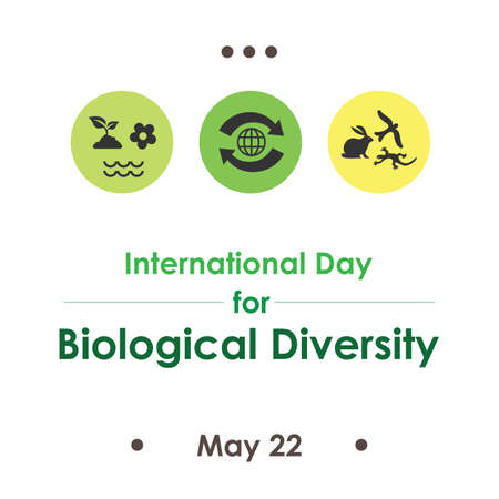 vector illustration / International Day for Biological Diversity