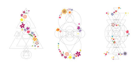vector illustration of colorful flowers and black geometric linear designs
