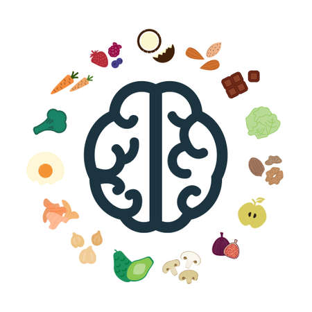 vector illustration of healthy food for brain in circle shape design