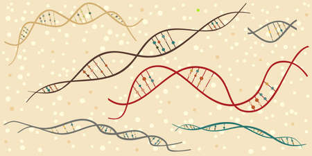 vector illustration of  DNA chains for genetic investigations and science in retro colors 일러스트