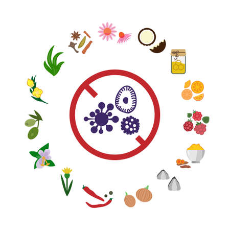 vector illustration of antiviral foods in round shape design