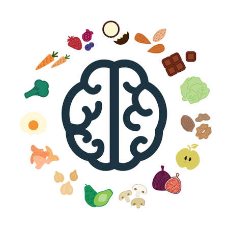 vector illustration of superfoods and nutritional components for healthy brain