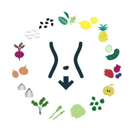 vector illustration of food good for detox and digestive system cleansing Иллюстрация