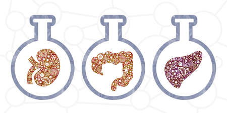 vector illustration of microscopic investigation of infected tissues and organ samples with bacteria in flasks