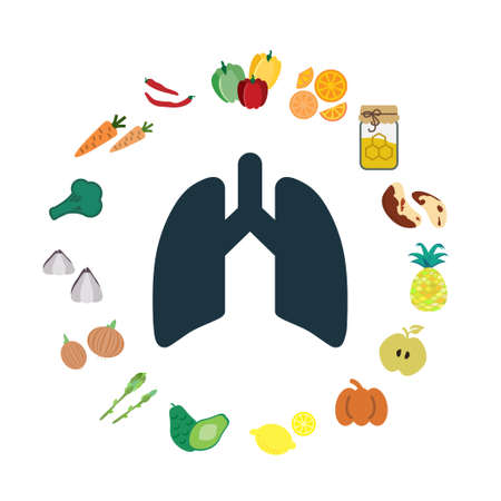 vector illustration of food good for lungs and respiratory system