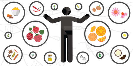 vector illustration of human body and natural immunity boosting plants 向量圖像