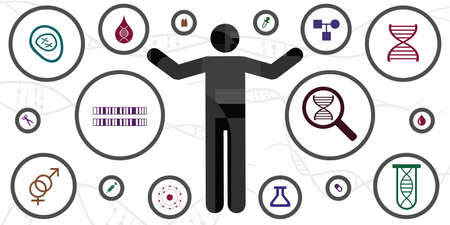 vector illustration of microscopic investigation of human DNA body and chromosome icons 向量圖像