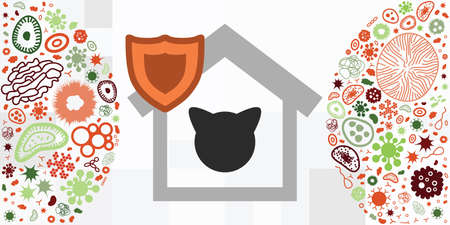 vector illustration of cat and home symbols for pets protection from viruses