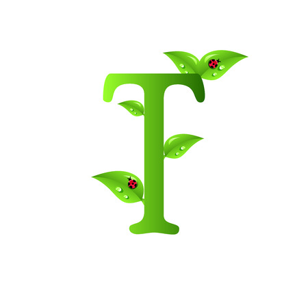 original design: Letters of green leaves and water drops, original design font. Illustration