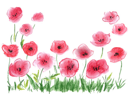 Poppies hand drawn with pastel