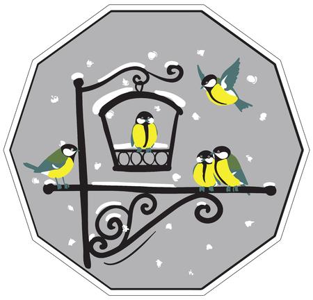 birds at feeders, in winter